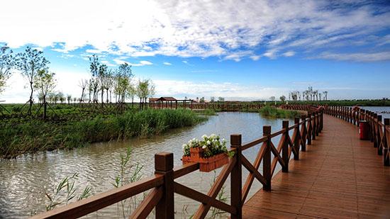 """""""笔尖上的中国——天津七里海国家湿地公园尊贵文化之"""